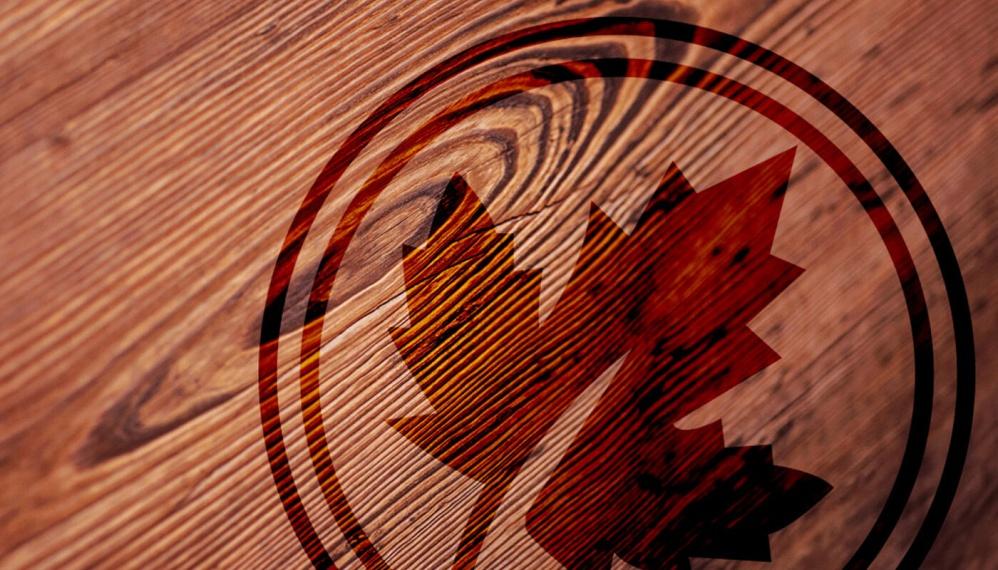 jdp-carpentry-logo-wood